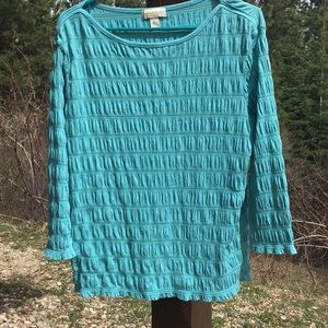 Large 🍎 Appleseed's Turquoise pullover Top
